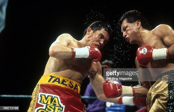 Julio Cesar Chavez lands a left hook against Tony Lopez during the fight at Estadio de Beisbol Monterrey Nuevo Leon Mexico Julio Cesar Chavez won the...