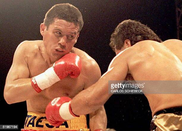 Julio Cesar Chavez of Mexico takes a left to the stomach from Tony The Tiger Lopez of Sacramento California 10 December 1994 during the third round...