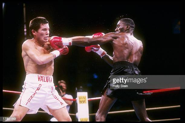 Julio Cesar Chavez throws a punch at Roger Mayweather during a fight Chavez won the fight Mandatory Credit Holly Stein /Allsport