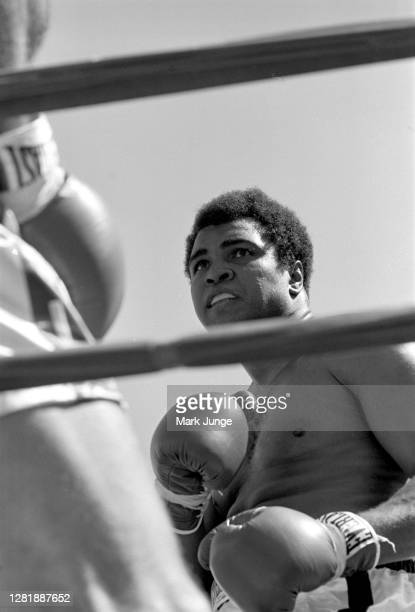 Muhammad Ali , pushes Lyle Alzado up against the ropes during an eight-round exhibition match at Mile High Stadium on July 14, 1979 in Denver,...