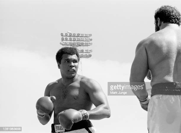 Muhammad Ali squares off against Lyle Alzado during an eight-round exhibition match at Mile High Stadium on July 14, 1979 in Denver, Colorado. Ali...