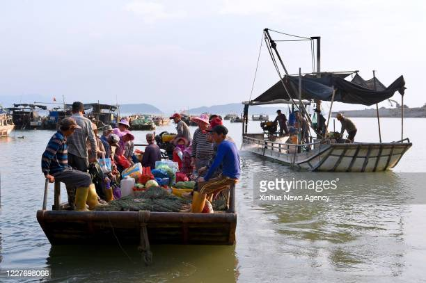 XIAPU July 16 2020 Farmers of Qiuzhugang Village take boat to harvest oysters in the sea of Changchun Township in Xiapu County southeast China's...