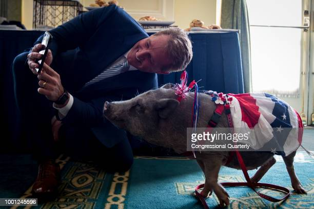 Sen Jeff Flake RAriz takes a selfie with a pig at the 2018 Congressional Pig Book launch event hosted by Citizens Against Government Waste Wednesday...