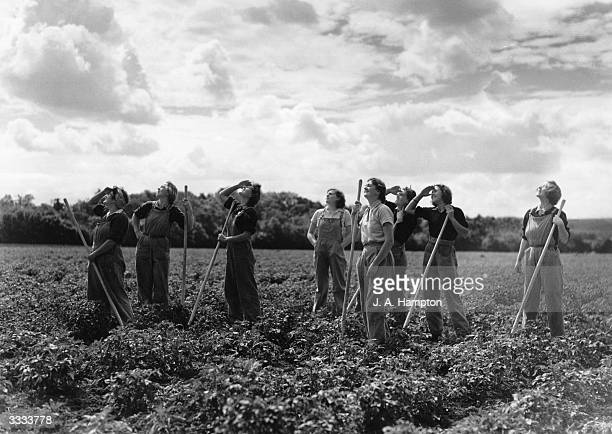 Land girls pause from their work in a field of crops to watch a squadron of fighter planes returning from a sweep over enemy territory