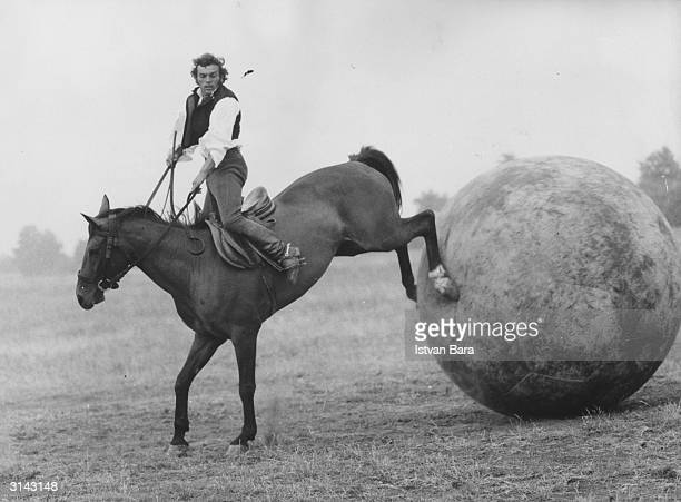 A rider gets his horse to kick a giant football during an equestrian football match one of the attractions at the 'Horseman's Days' festival in...