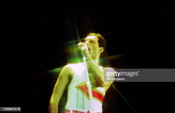 MANDATORY CREDIT Bill Tompkins/Getty Images Freddy Mercury of Queen performs at Madison Square Garden July 1982 in New York City