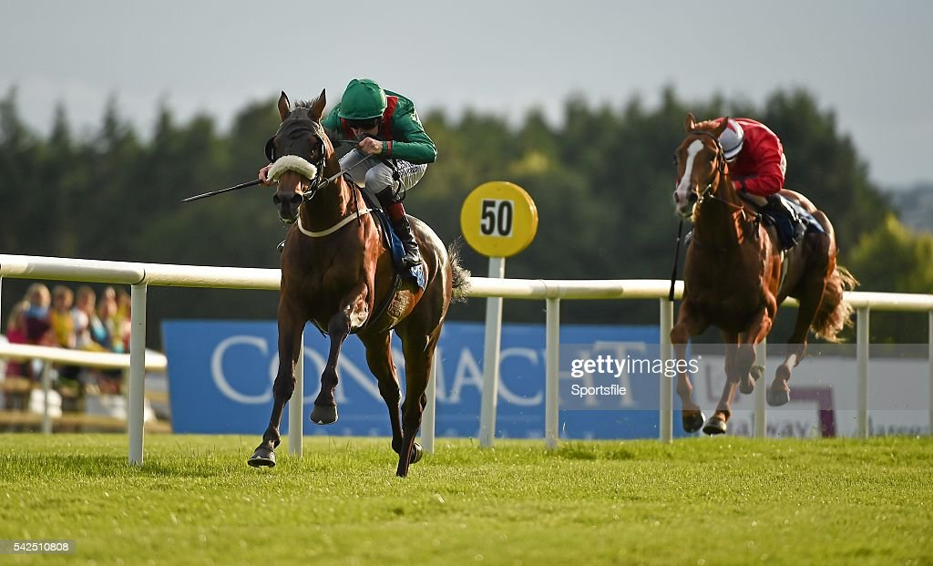 Galway Racing Festival - Monday 28th July 2014 : News Photo