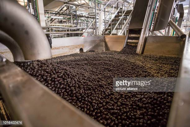 Processing of olives in southern Spain The US Department of Commerce has had antidumping and Countervailing duties on imports of olives from Spain...