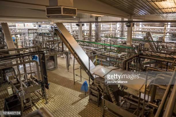 View of the plant of the olive company Agro Sevilla The US Department of Commerce has had antidumping and Countervailing duties on imports of olives...
