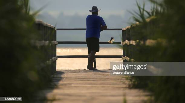 July 2019, Baden-Wuerttemberg, Bad Buchau: In the morning, shortly after sunrise, a man stands at the end of the 1.5 kilometre long Federseesteg and...
