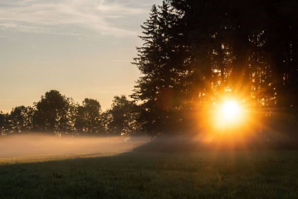 DEU: Morning Mood In Bavaria