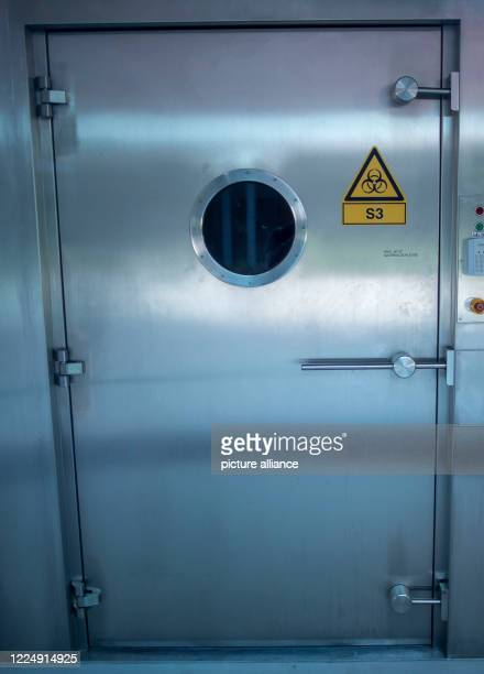 July 2020, Mecklenburg-Western Pomerania, Riems: Special airlock doors in front of a security level 3 laboratory in a laboratory building of the...