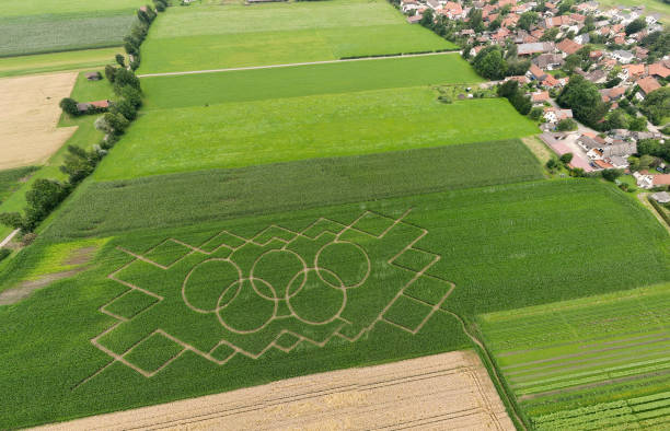 DEU: Cornfield Maze With Olympic Rings
