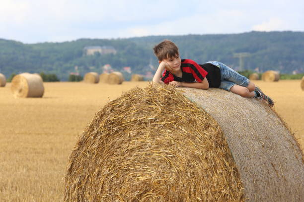 DEU: Haymaking In The Harz Mountains