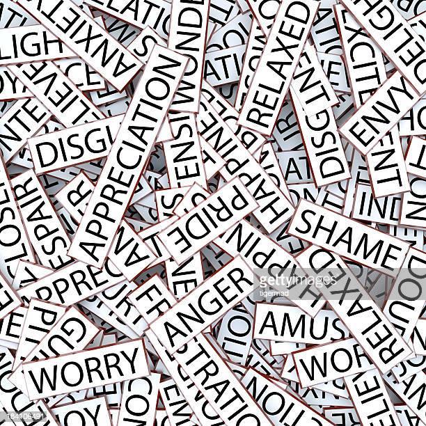 Jumbled mots-Les émotions