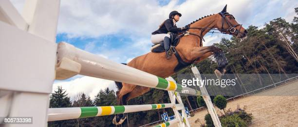 jump on a horse over the hurdle - equestrian event stock pictures, royalty-free photos & images