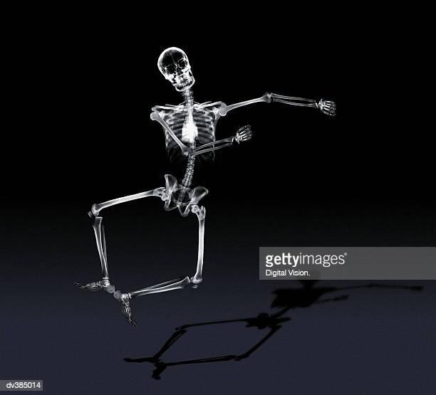 jumping skeleton - esqueleto humano fotografías e imágenes de stock
