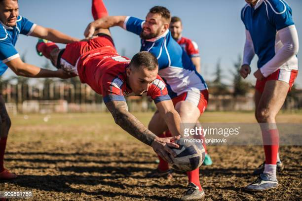 jumping to win - rugby team stock pictures, royalty-free photos & images