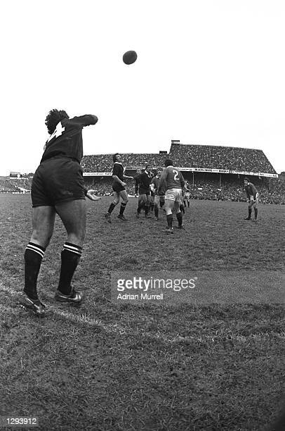 The New Zealand wing throws in to the lineout during the First Test match in Wellington on the British Lions tour to New Zealand The All Blacks won...