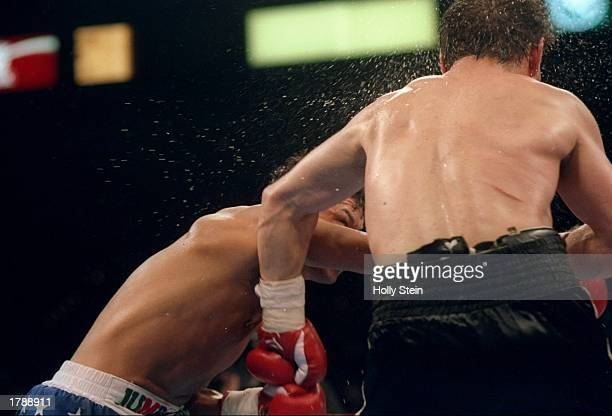 Tony Lopez and Greg Haugen trade blows during a bout in Las Vegas Nevada Mandatory Credit Holly Stein /Allsport
