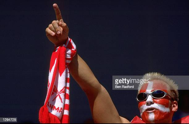 A Denmark fan shows his support during the World Cup group C game against South Africa at the Stade Municipal in Toulouse France Denmark won 10...