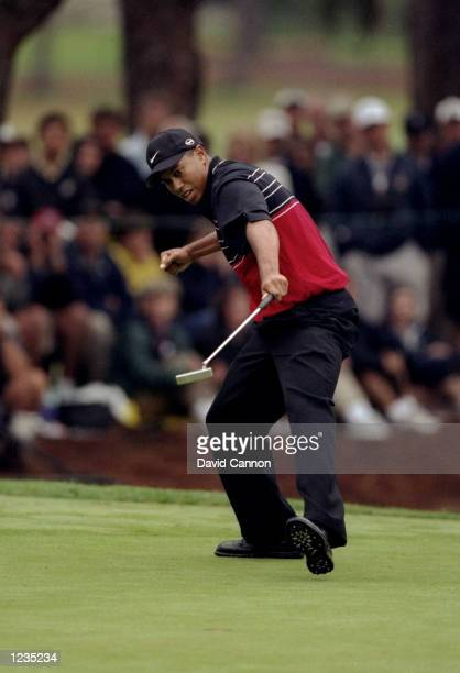 Tiger Woods of the USA begins to celebrate as the ball falls into the hole during the US Open played at Pinehurst GC on the number two course North...
