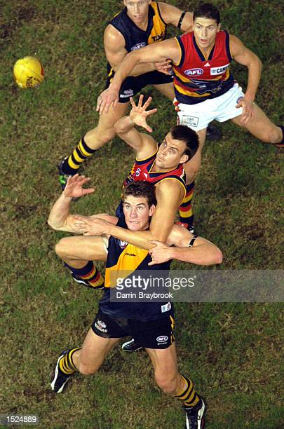Ben Marsh for Adelaide contests the throw in against Ben Holland for Richmond in the match between the Richmond Tigers and the Adelaide Crows during...
