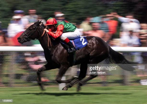 Steve Drowne and Aziz Presenting lead the field home at Salisbury to land a comfortable victory in The EBF Whiteparish Novices Fillies'' Stakes run...