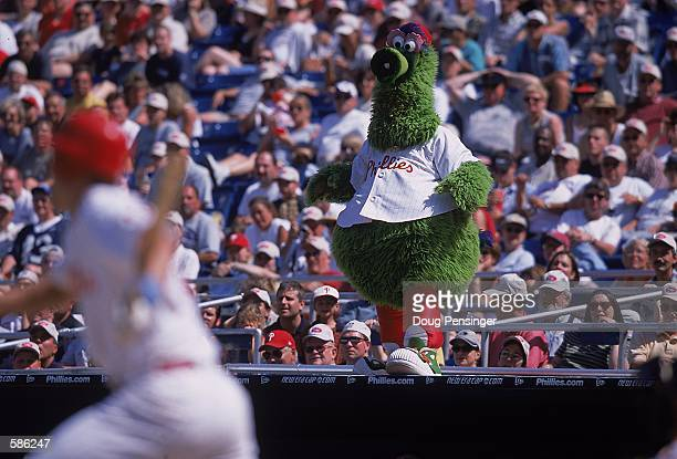 The Philadelphia Phillies mascot Philly Phanatic performs during the game against the Baltimore Orioles at the Veterans Stadium in Philadelphia...