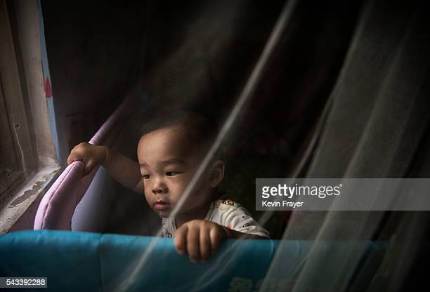Jun Jie stands behind a mosquito net in the family house on Shazai Island where the Sun YatSen UniversityMichigan University Joint Center of Vector...