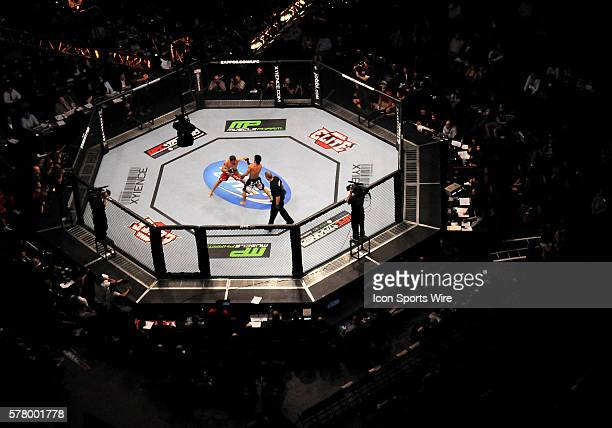 Featherweight American Darren Elkins defeated Japan's Michihiro Omigawa in the octagon during UFC 131 at Rogers Arena in Vancouver British Columbia...