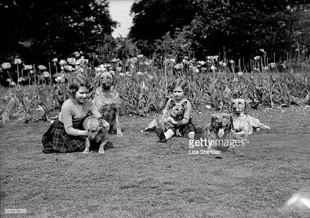 Princesses Margaret Rose and Elizabeth with their dogs in the grounds of Windsor Castle Berkshire