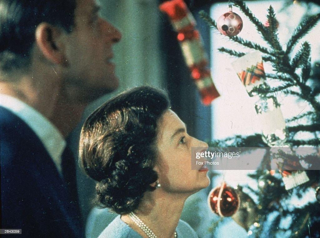Royal Tree : News Photo