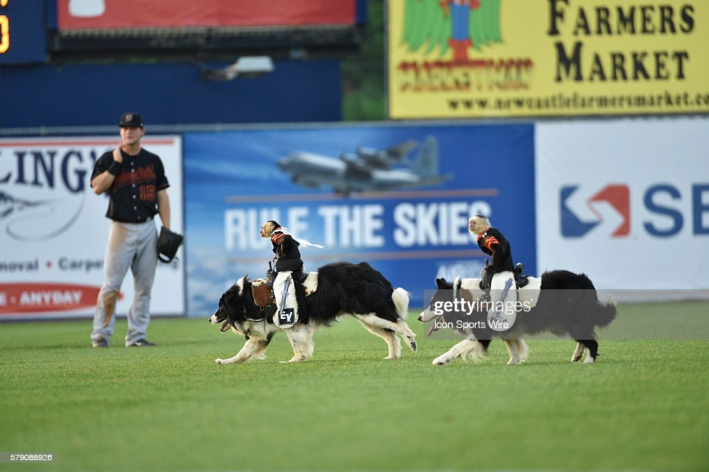 MiLB: JUN 17 2014 California League-Carolina League All-Star Game ...