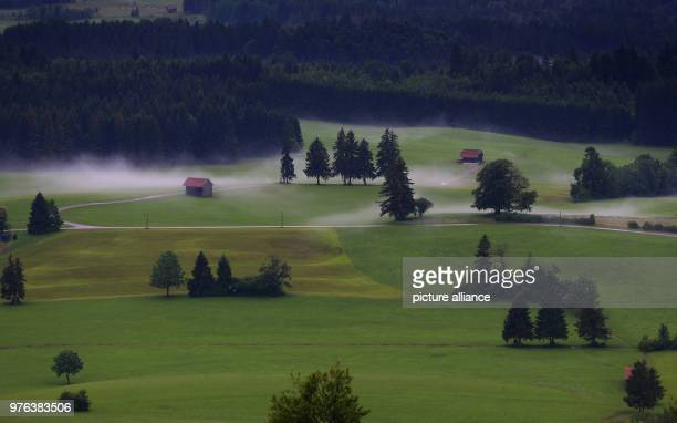 After heavy rainfalls mist forms at the foothills of the Alps Photo KarlJosef Hildenbrand/dpa