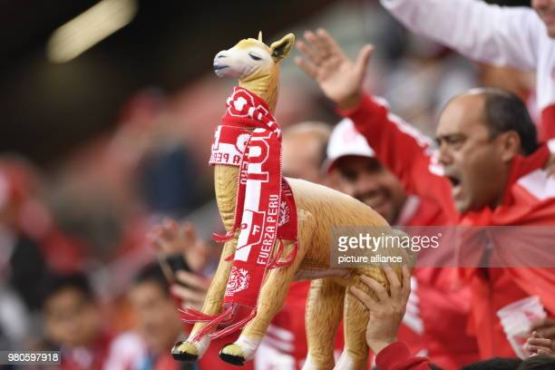 21 June 2018 Russia Yekaterinburg Soccer World Cup 2018 France vs Peru Preliminary round group C Second game day at the Yekaterinburg arena A fan of...