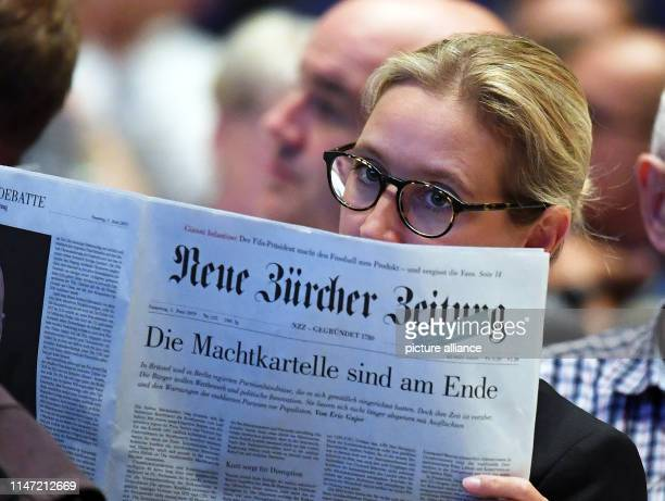 June 2019, Baden-Wuerttemberg, Pforzheim: Alice Weidel, chairwoman of the AfD parliamentary group in the Bundestag, will take part in the 14th state...