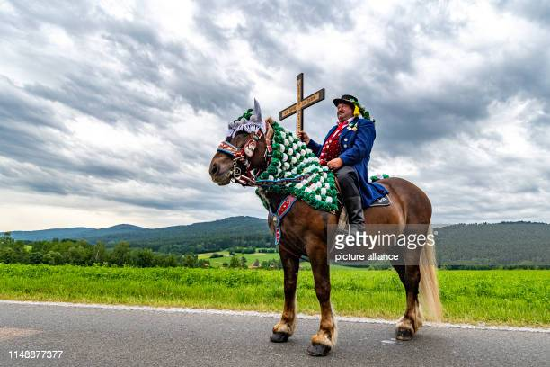 A participant of the Kötztinger Whitsun Ride rides on a horse The procession with around 900 riders is one of the oldest Bavarian customs events The...