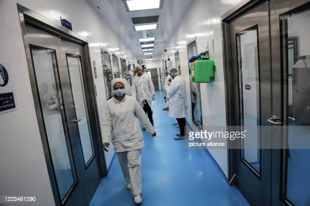 June 2020, Egypt, Giza: Employees of Egyptian pharmaceutical company Eva Pharma operate at the company's factory, where the production of Remdesivir,...