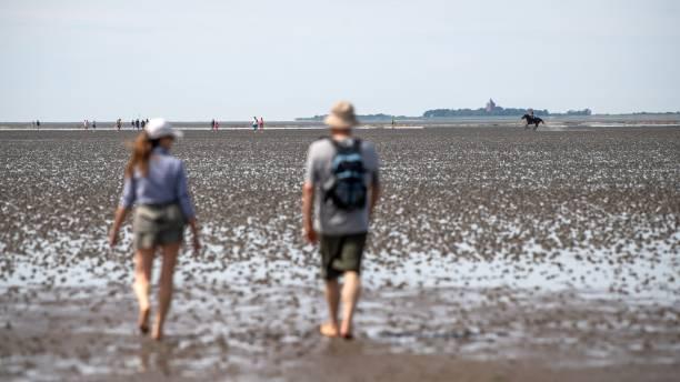 DEU: Summer At The North Sea