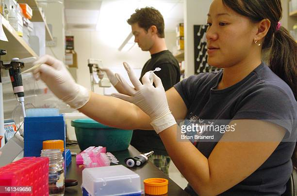 June 22, 2006--<cq>Researchers are at work in the new University of Colorado Health Sciences Center, a massive $850 million at the former Fitzsimons...