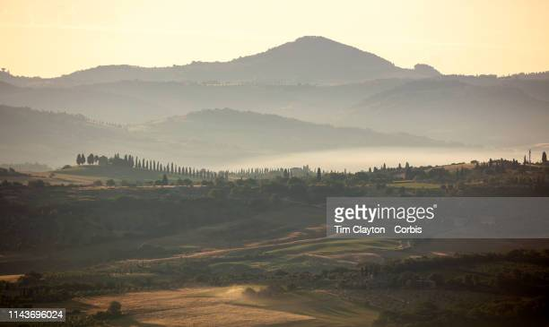 June 28: A general view of the sweeping vineyards at dawn in the surrounding district of Montalcino, a hill town in the province of Siena, Tuscany,...