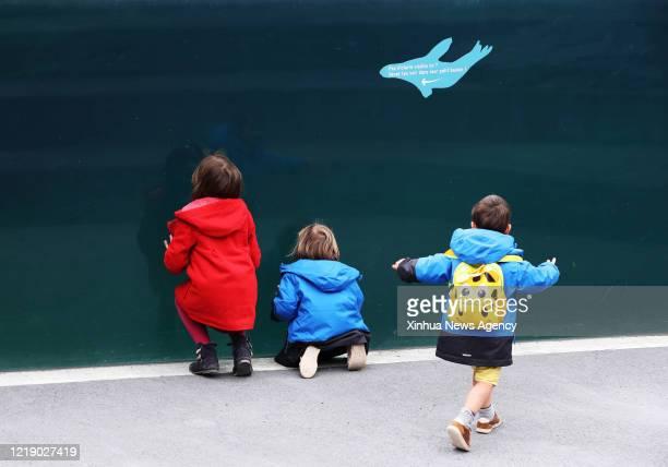 PARIS June 9 2020 Children watch sea lions at the Paris Zoological Park in the Bois de Vincennes Paris France June 9 2020 Paris Zoological Park...