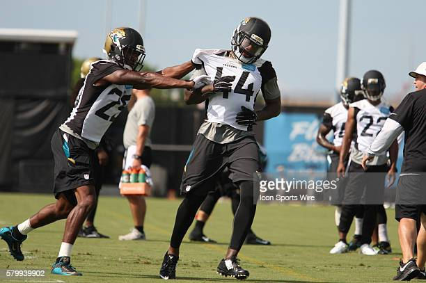 June 9th 2015 Jacksonville FL USA LB Todd Thomas CB Tommie Campbell participating in drills and during the Jacksonville Jaguars OTA's held at the...