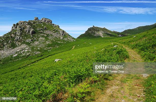 june greenery of valley of the rocks - exmoor national park stock pictures, royalty-free photos & images