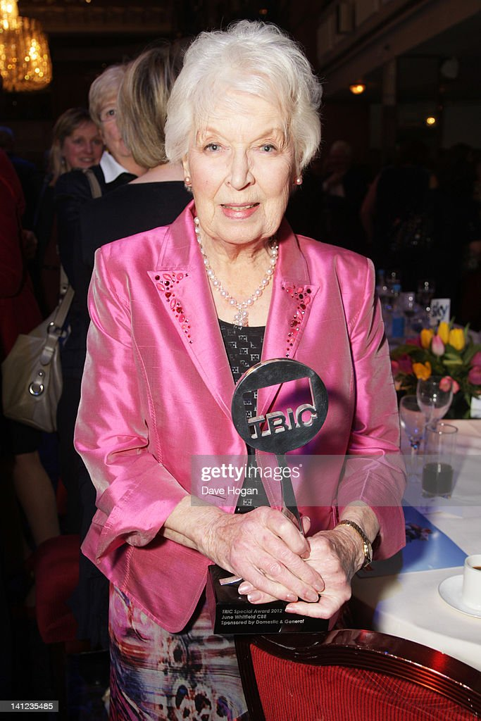 The TRIC Awards 2012 - Inside Ceremony : News Photo