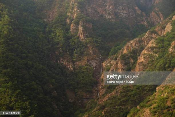 jungle and cloud - henan province stock photos and pictures