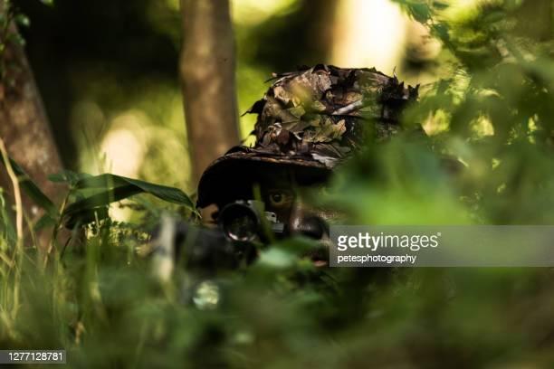 ジャングルハンター戦術的な狙撃兵 - 待ち伏せ ストックフォトと画像