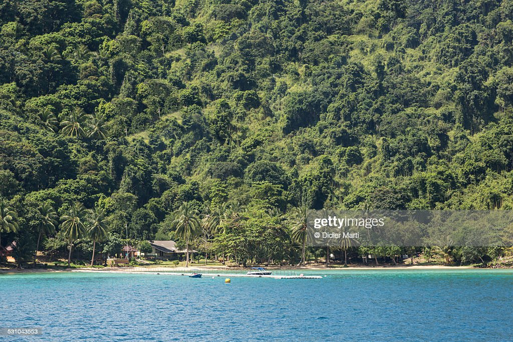 Jungle island Koh Chang in Thailand : Stock Photo