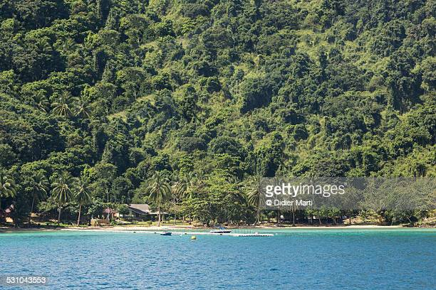 jungle island koh chang in thailand - didier marti stock photos and pictures